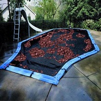 Blog-Image-Pool-Cover-Leaves